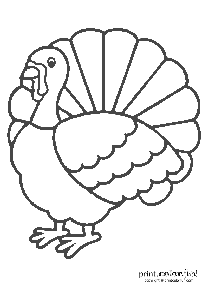 Thanksgiving Turkey Coloring | Print Color Fun! Free