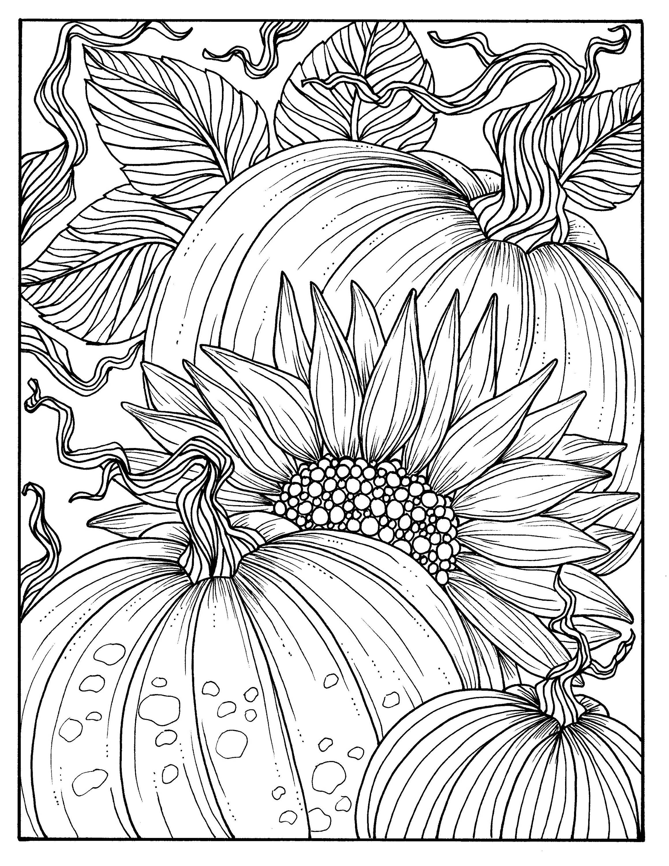 Pumpkins And Sunflower Digital Coloring Page Fall, Adult
