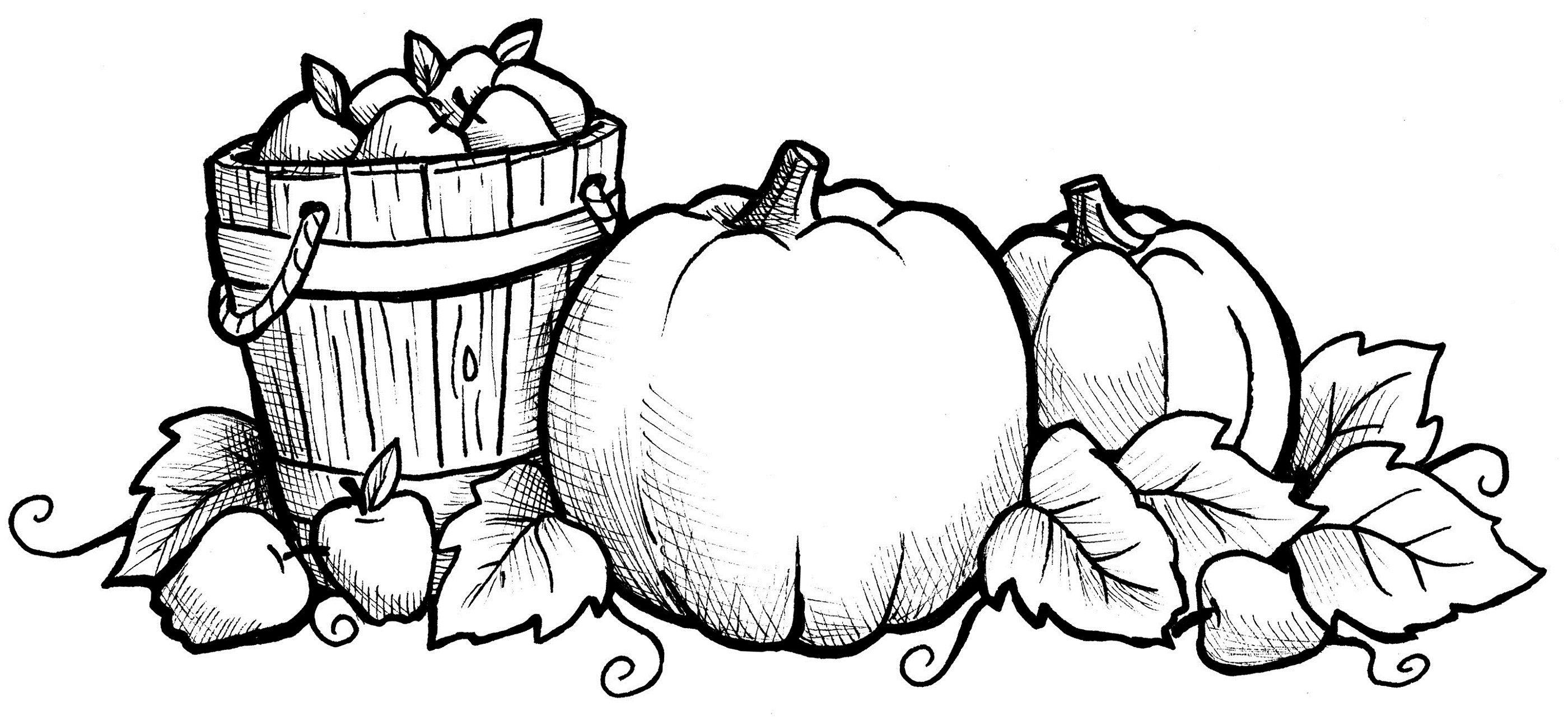 Fall Coloring Sheets Printable   Coloring   Fall Coloring