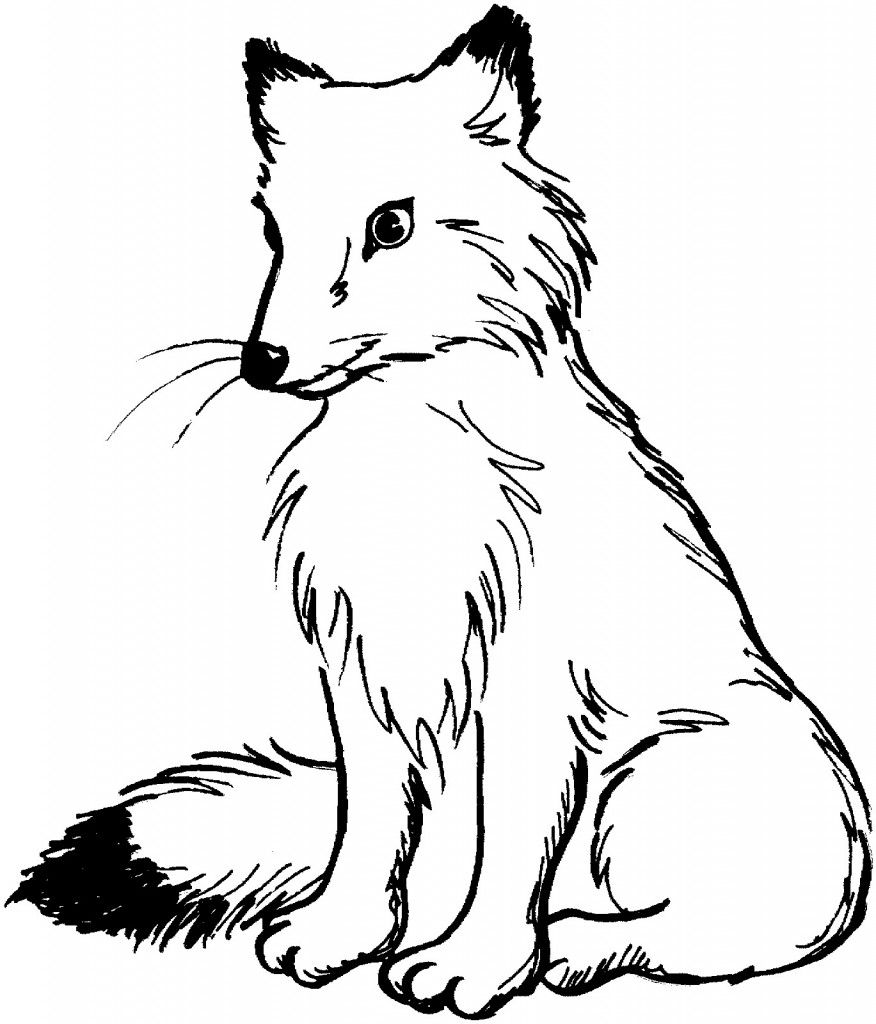 Free Printable Fox Coloring Pages For Kids | Coloring Pages