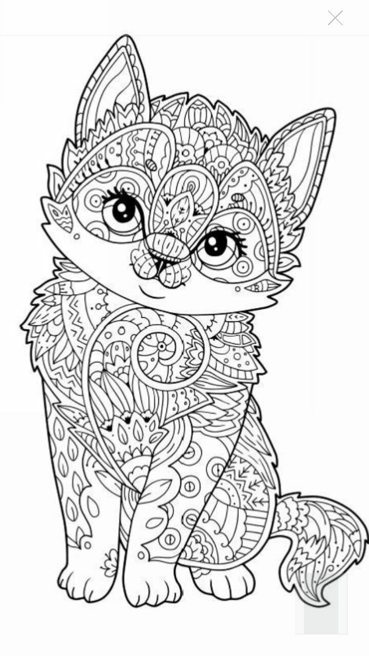 Cute Kitten Coloring Page | צ��ע�