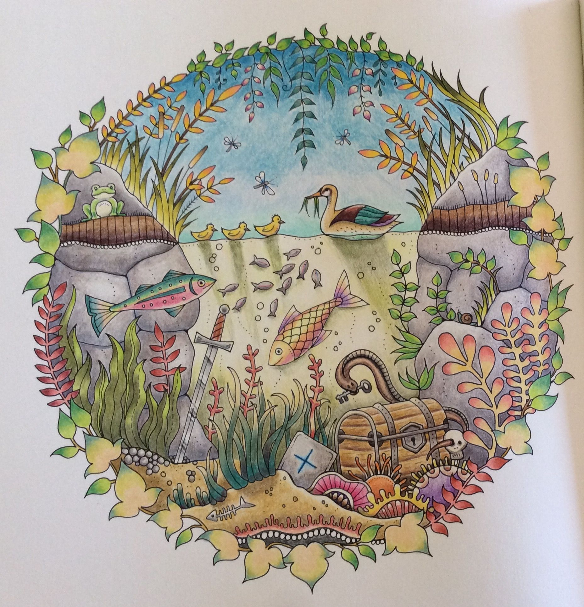 Enchanted Forest Coloring Book By Johanna Basford: The Duck