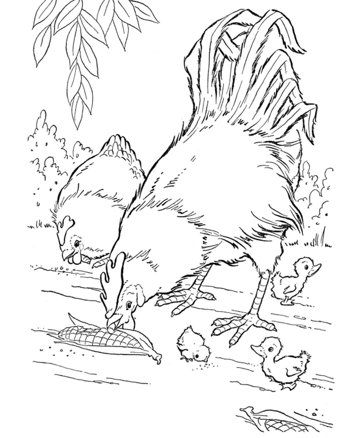 Free Printable Farm Animal Coloring Pages For Kids | Adult