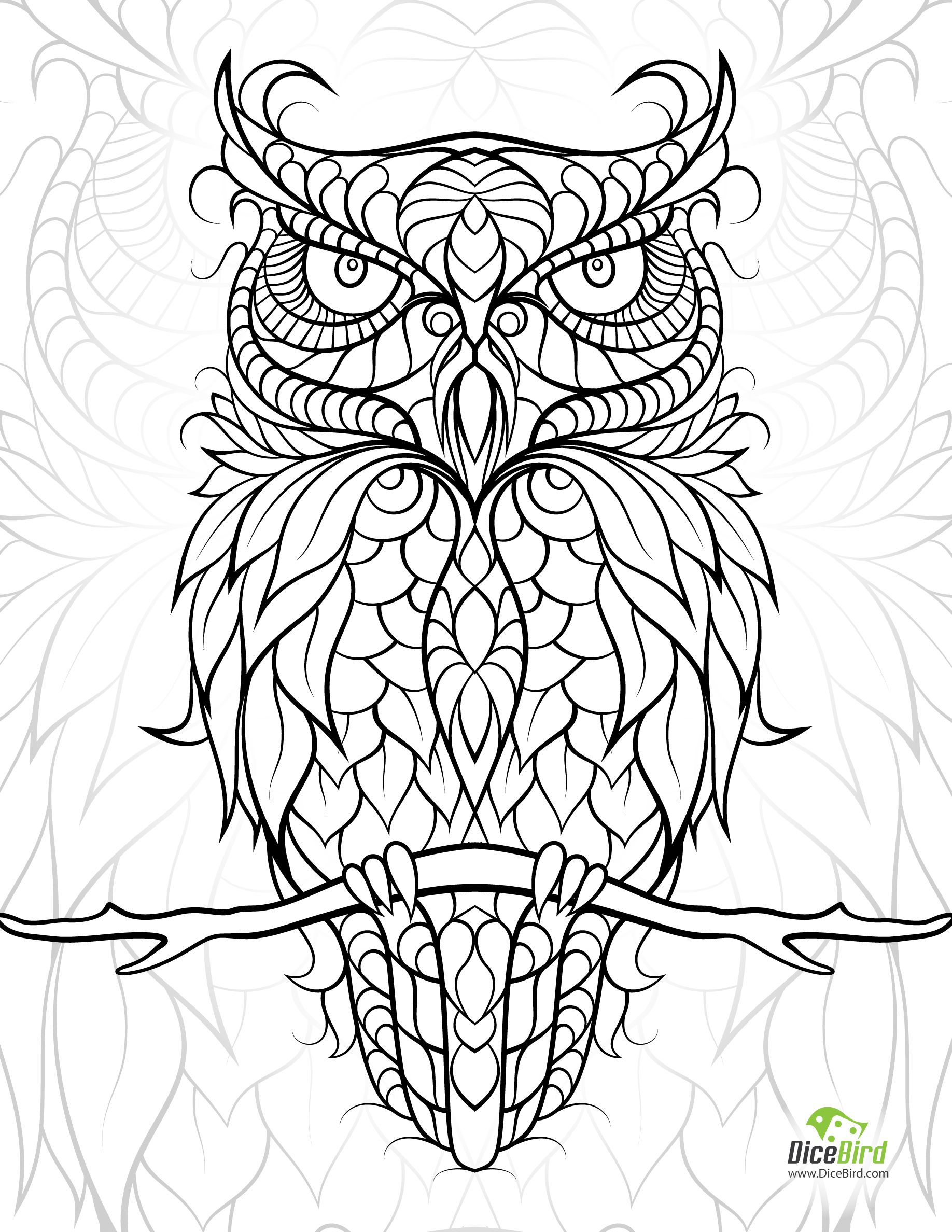 Owl | Pattern - Owls | Owl Coloring Pages, Free Adult