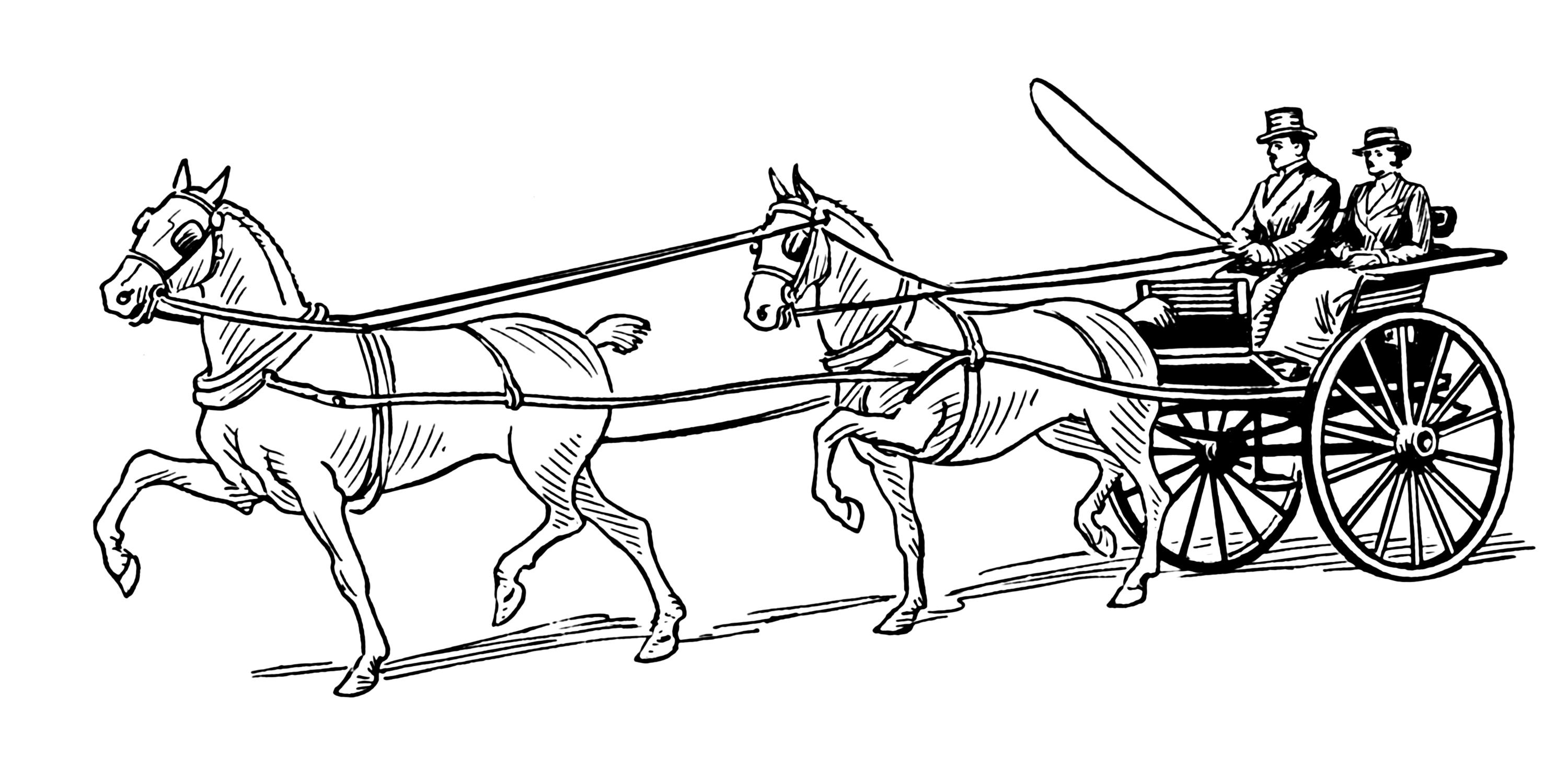 Horse Coloring Pages | Horse Coloring Pages, Animal Coloring