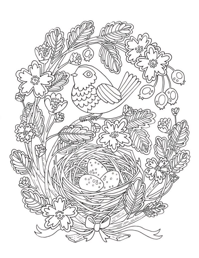 Bird And Nest Coloring Page | Printable Flower Coloring