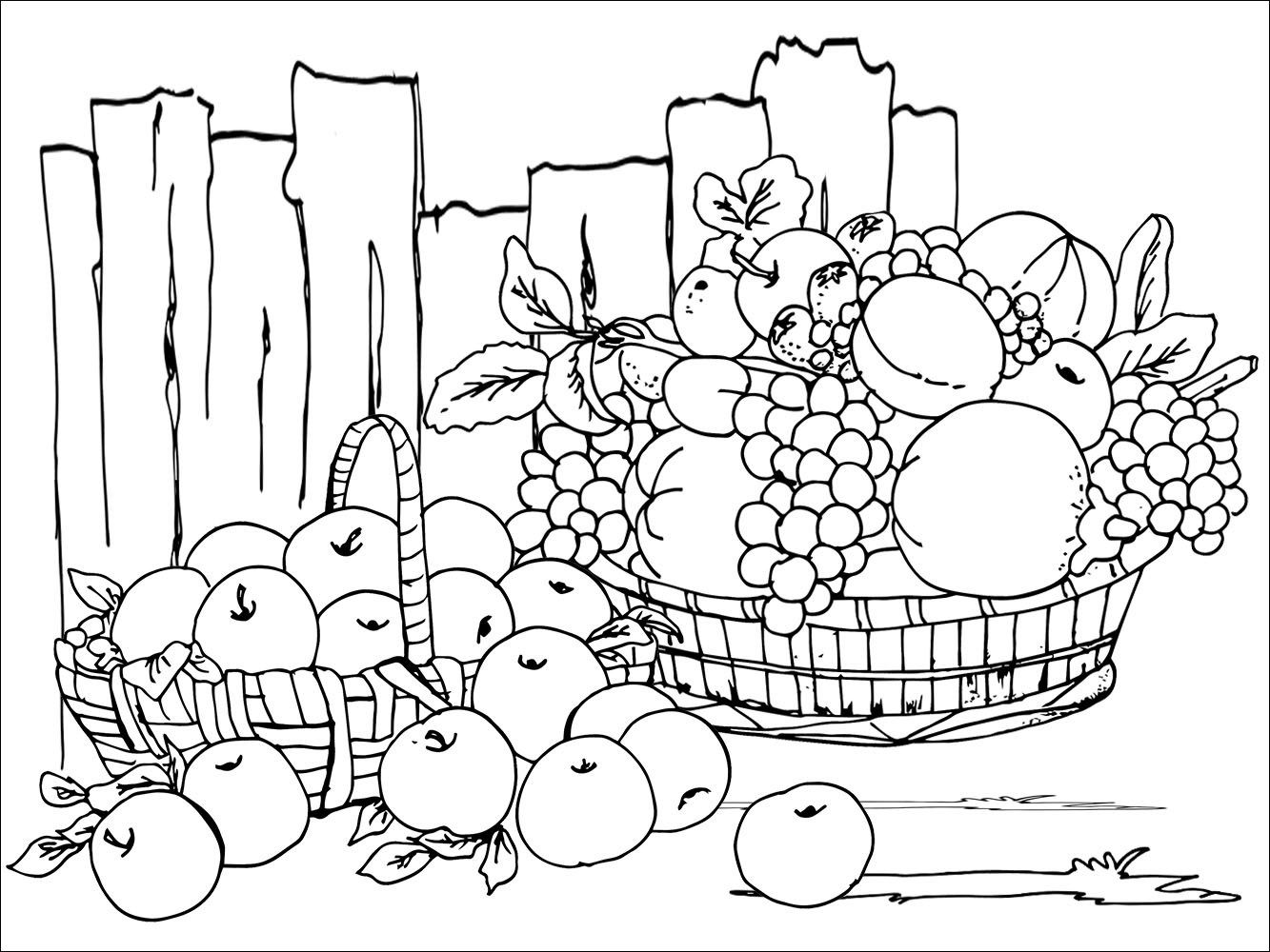 Harvest Festival Colouring Sheet | Coloring Sheets