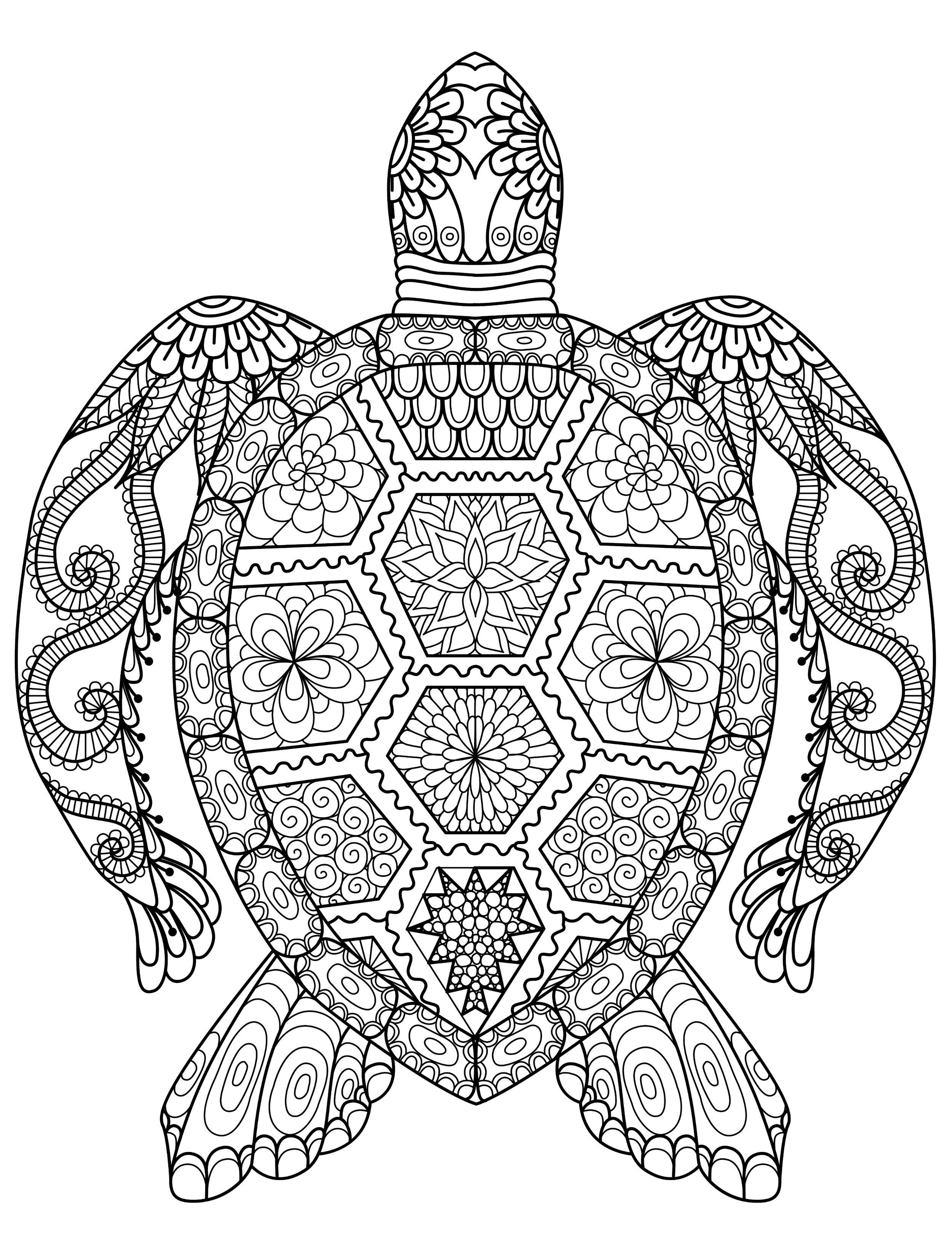 20 Gorgeous Free Printable Adult Coloring Pages | Turtle