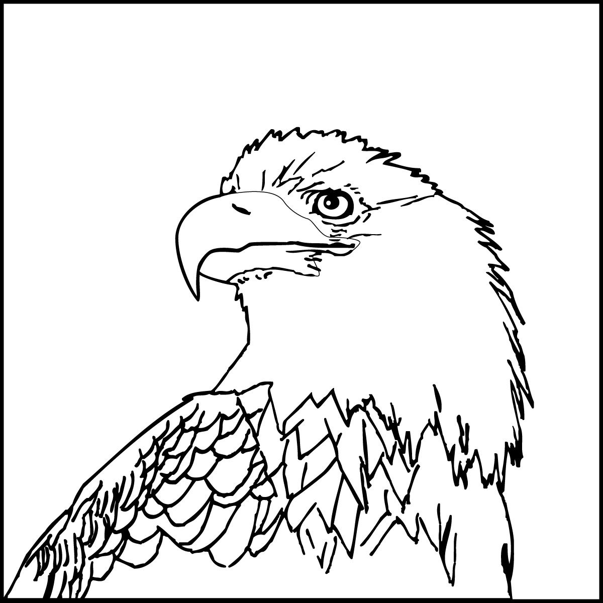 Image Result For American Eagle Symbol Coloring Book