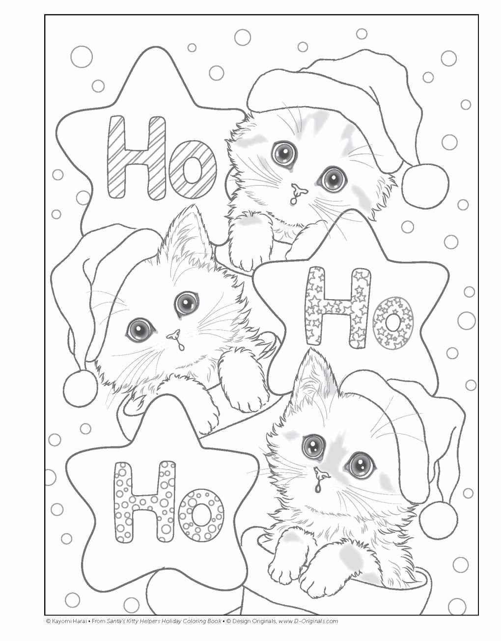 Image Result For Christmas Kitten Coloring Pages   Christmas
