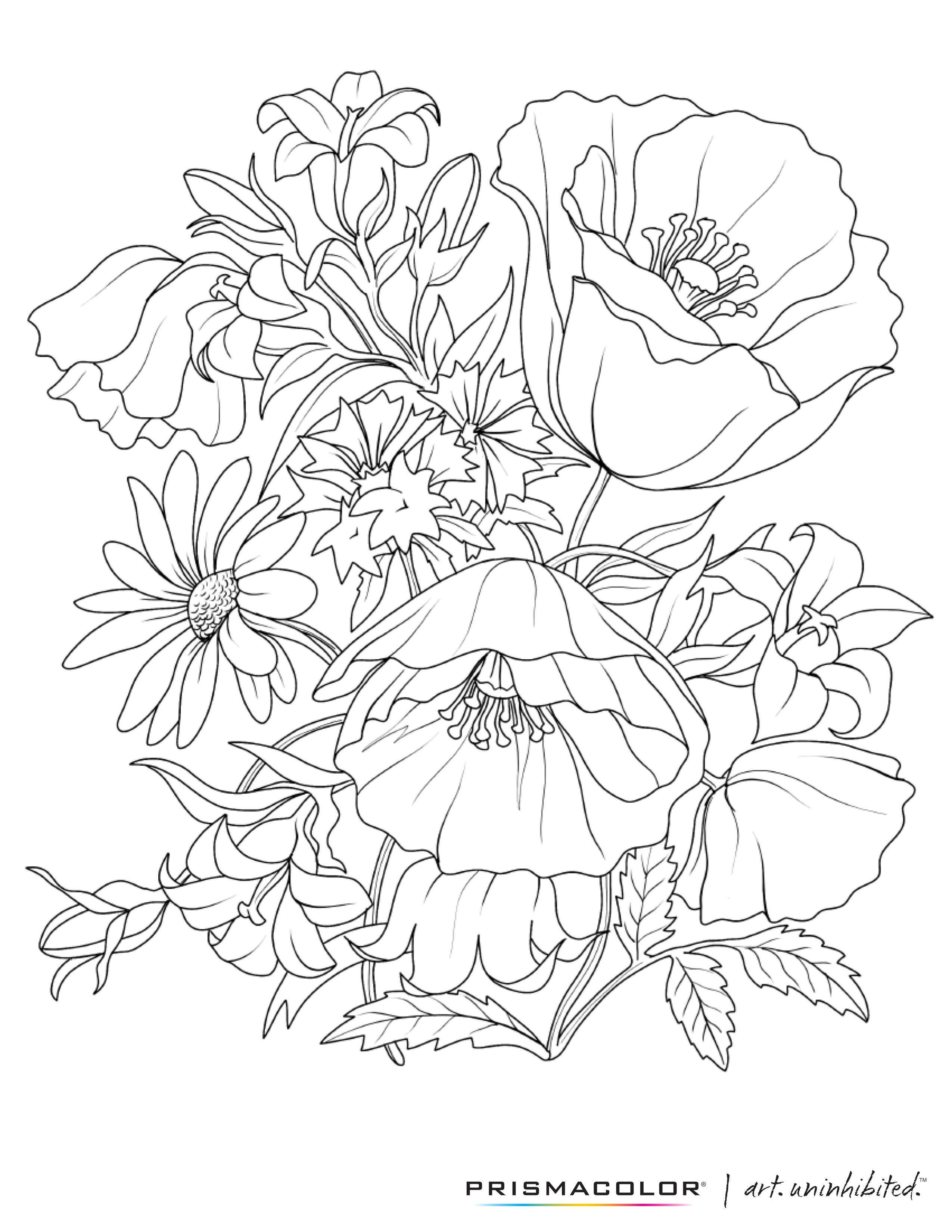 What A Beautiful Flower Adult Coloring Page! | Pared Mandala