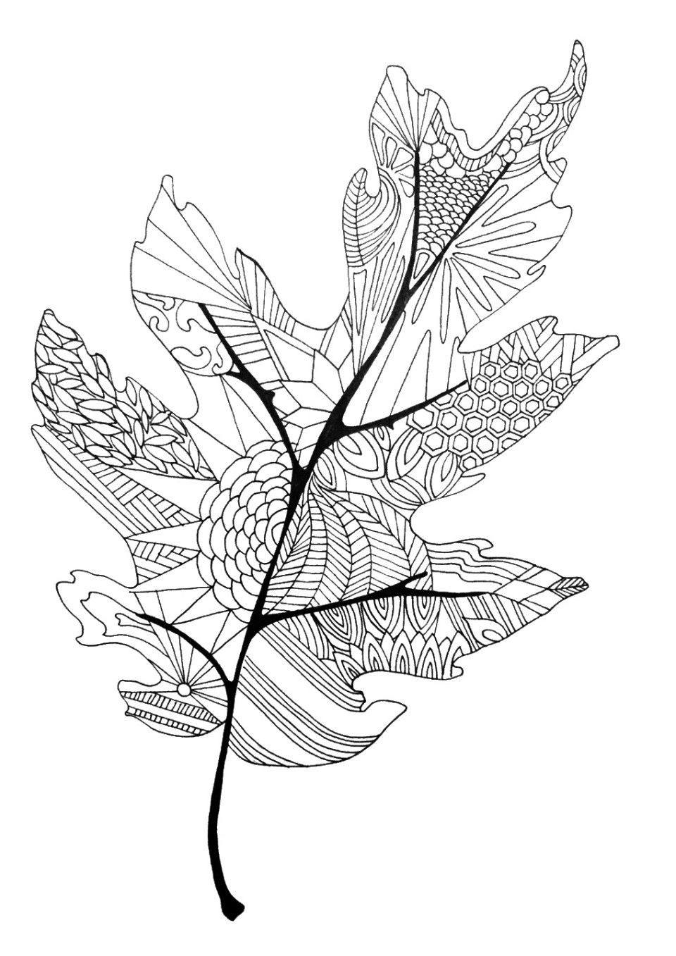 Coloring In The Lines | Printable What Nots | Fall Leaves