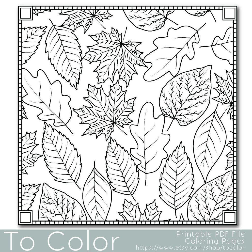 Autumn Leaves Coloring Page For Grown Ups - Instant Download