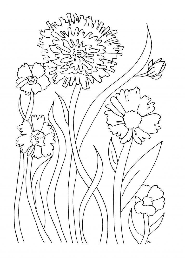 Free Printable Flower Coloring Pages For Kids | Drawing
