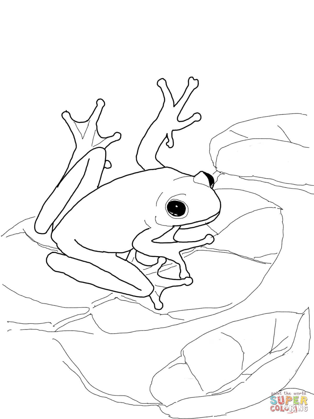 Pin By Jj Dunagan On Bullets | Frog Coloring Pages, Animal