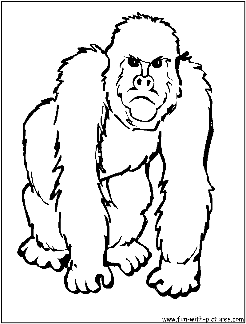 African Animal Printables   Animal Coloring Pages   Apen