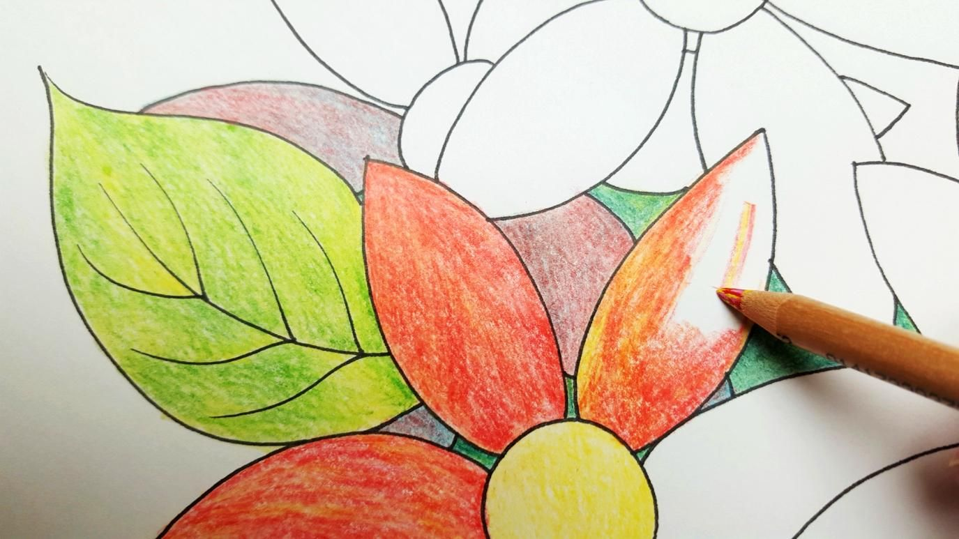 6 Creative Coloring Ideas For Adult Coloring Books