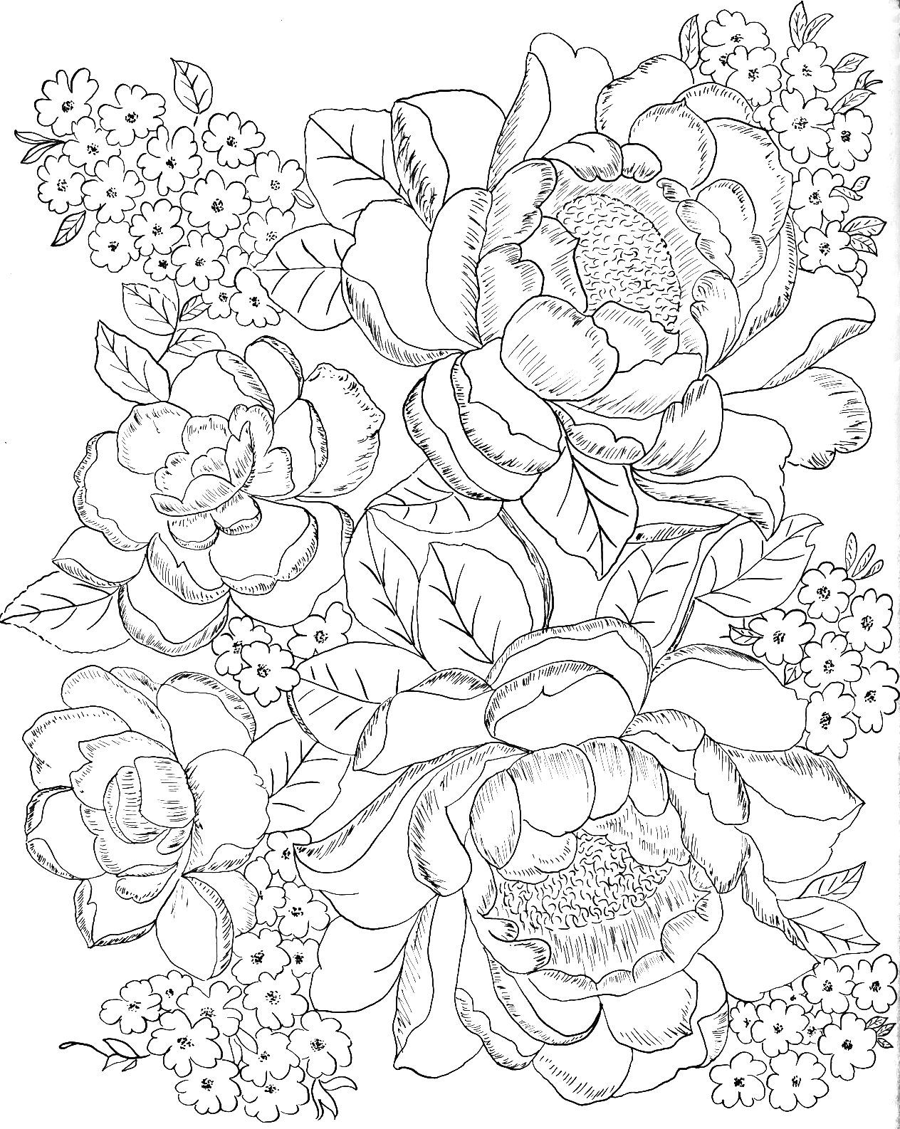 Pin By Kelly Hook On Coloring   Flower Coloring Pages, Adult