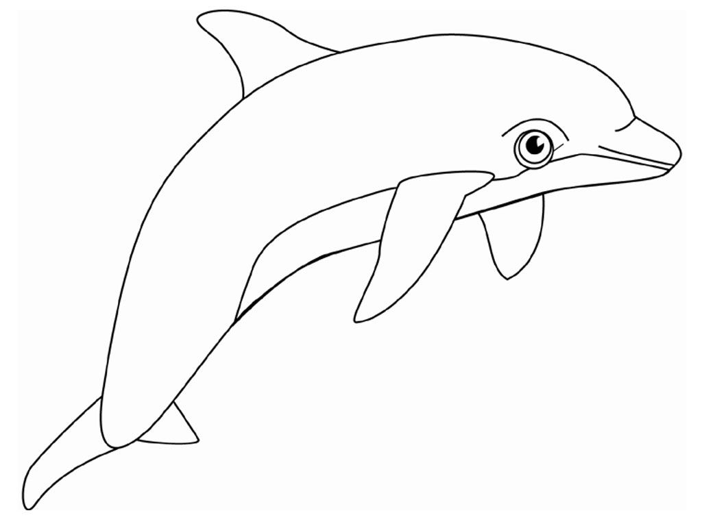 Free Printable Dolphin Coloring Pages For Kids | Dolphin