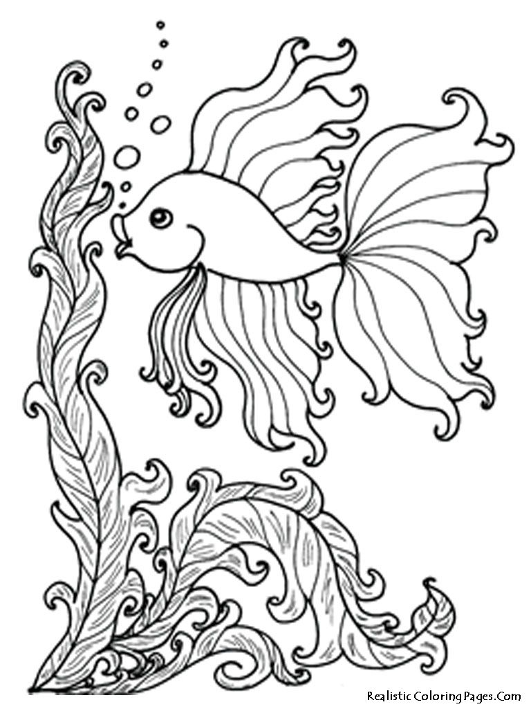 Free Ocean Coloring Pages Image 20   Coloring Pages   Ocean